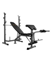 Multi-Functional Weight Bench