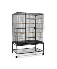 Pet Bird Cage with Perch